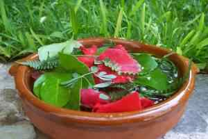 Bundle of herbs soaking in a bowl